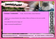 Customer Testimonial of EssentiallyPurrfect #mobile #Persian #cat #catgrooming service. Yvonne #Horwich #Bolton #Manchester