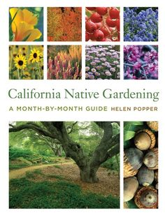 California Native Plant Society: Sacramento Chapter - lots of events and education regarding using native plants in your garden