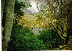 IRELAND LANDSCAPES, via Flickr.