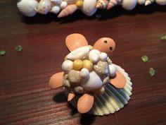子ガメ君★貝殻の上でひと休み★天然貝殻と牛革★ミックス貝殻甲羅