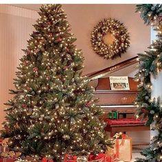 😍 🎄☃️❤🎅🎁❄🦌 by Friggin Love Christmas ❤ Days Till Christmas, Christmas Eve, Christmas Lights, Christmas Decorations, Xmas, Holiday Decor, Christmas Images, Christmas Movies, Christmas Treats
