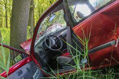 Risarcimento danni fisici per incidente stradale con animale selvatico: i consigli dell'avvocato per tutelare i propri diritti e ottenere un indennizzo.