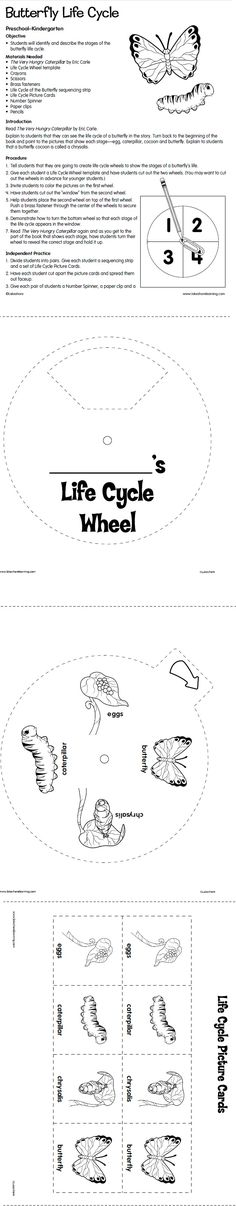 Butterfly Life Cycle Lesson Plan from Lakeshore Learning. Hello lesson plan for science class tomorrow :D #section threeeeee