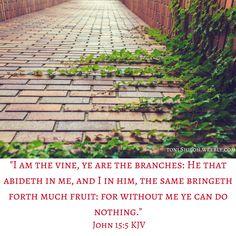 John 15:5 KJV