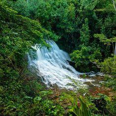 """One of my favorite hikes down a neighborhood in Kapaa, Kauai. Lower Ho'opi'i falls. #travelbecause #kauai #hawaii #waterfall #waterfalls #dustinemily397"" Photo taken by @taylorehat on Instagram, pinned via the InstaPin iOS App! http://www.instapinapp.com (08/15/2015)"
