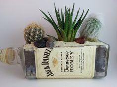 Jack Daniels Tennesse Honey // Liquor Bottle by LookingSharpCactus Wine Bottle Garden / Succulent Gift / CHRISTMAS GIFT / Glass Planter / Wine Bottle Planter / Succulent Garden / Succulents / Cactus / Cacti by LookingSharpCactus #lookingsharpcactus
