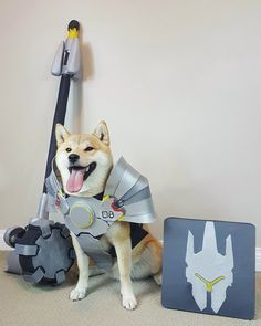 Reinhardt Doge by @Outside_the_Vox
