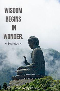 Wisdom begins in wonder, l'émerveillement mène à la sagesse, s'émerveiller s'est être soi-même, être soi être sage?!?