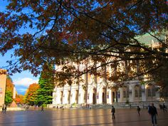 Beautiful fall trees and sunshine on Suzzallo library. #youW Photo by Tessa Meischeid