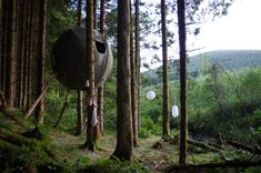 tree tents by luminair