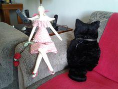 Tilda e almofada de gato