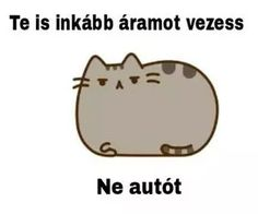 "Find and save images from the ""pusheen magyar😉"" collection by Zoé Rácz (zoeracz) on We Heart It, your everyday app to get lost in what you love. Pusheen Cat, Everything Funny, Big Bang Theory, Funny Moments, Bigbang, Puns, We Heart It, Funny Jokes, Haha"