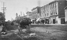 Rideau Street, north side looking west, Ottawa, Ontario, 1898.  
