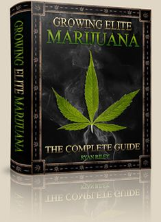 How To Grow Marijuana Indoors / Outdoors, Guide, Weed Growing