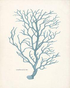 Vintage coral print