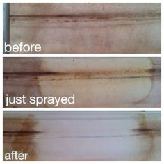 Have mold in your camper? Don't waste your time on other cleaners. Get this miracle stuff first!!