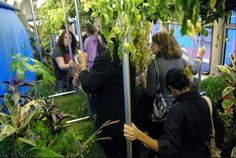 Chicago Subway Train Transformed Into Lush Mobile Garden on Wh. Chicago, Driving Miss Daisy, Public Transport, Installation Art, Perfect Place, Lush, Haha, The Neighbourhood, Around The Worlds