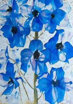 Delphinium watercolour