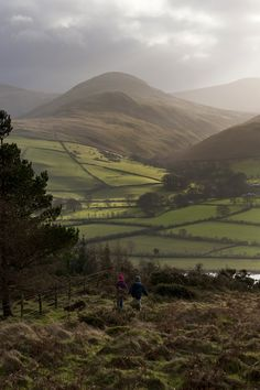 Descending Low Fell, Loweswater, England