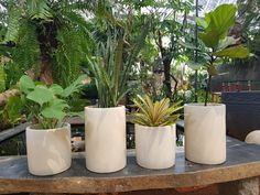 pot silinder bahan teraso Jakarta, Modern, Plants, Diy, Trendy Tree, Bricolage, Diys, Planters, Handyman Projects
