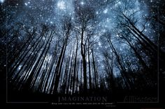 Verbeelding, Sterrenhemel door boomtakken, Engelse tekst: Imagination Keep Your Eyes on the Stars Poster bij AllPosters.nl
