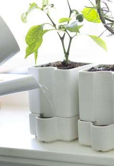 "The SÖTCITRON plant pot makes a great ""plant sitter"" because it has a self-watering insert that keeps the soil moist to help keep your plants happy, even if you go away for a few days."
