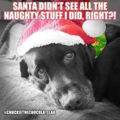 Santa didn't see all the naughty stuff I did, right?