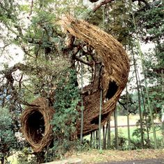Make amazing stick sculptures with your kids as inspired by artist Patrick Dougherty.