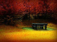 5 images d'automne - Frawsy
