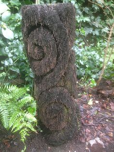 Image result for carved tree fern trunk Wood Projects, Projects To Try, Tree Fern, Tree Carving, Ferns, Courtyard Ideas, Country Living, Plants, Gardens