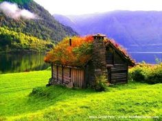 Iceland- reminds me of the Shire from LOTR