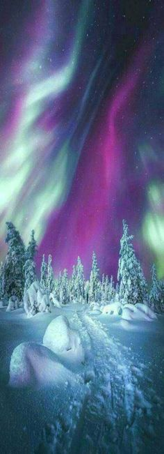 Winter landscape - Aurora Boreales/Northern lights.  Best place to see the Northern Lights is Finland.