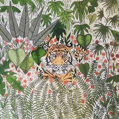 Bébé/enfants tigre Jungle aquarelle & impression encre 8 x 8