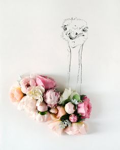 ostrich and Flower Photograph No. 88240 by kariherer on Etsy, $30.00