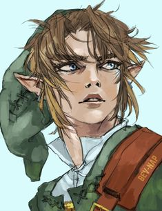 Blessed by the Goddess by Bev-Nap on DeviantArt The Legend Of Zelda, Legend Of Zelda Memes, Legend Of Zelda Breath, Link Fan Art, Link Art, Tp Link, Link Twilight Princess, Pretty Drawings, Link Zelda