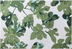 Peter Dunham Fig Leaf....