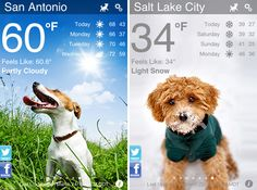 Weather Puppy (currently for iPhone, but coming soon for Android) presents current-conditions and forecast information with a super-cute puppy backdrop that changes based on the current weather and time of day. And the weather data comes from Weather Underground, so Weather Puppy is cute and totally legit at the same time.
