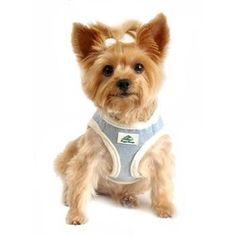American River Choke Free Dog Harness - Washed Blue Jean and Cream Minky Fur