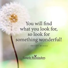 """""""You will find what you look for, so look for something wonderful! """"  — Bryant McGill"""