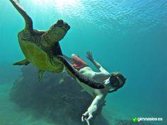 #bajoelagua #underwater #submarinismo #peaceful #relax #tortuga #turtle #gopro #agua #mar #sensaciones