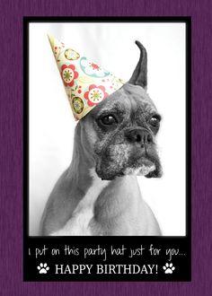 Amelia Greetings Happy Birthday