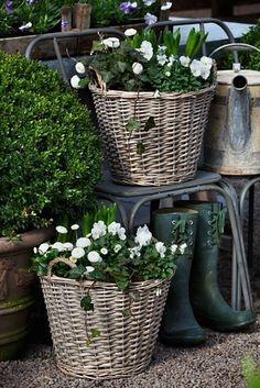 Okouzlující bílo-zelené zahrady
