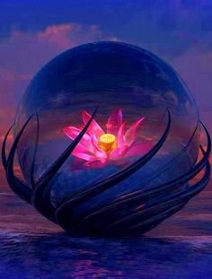 Beauty is the light of awareness colored by gratitude. Evanescence, Love And Light, Sacred Geometry, Faeries, Creative Inspiration, Fantasy Art, Beautiful Pictures, Spirituality, Artwork