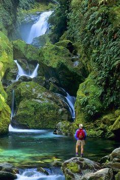 Fiordland National Park, New Zealand.