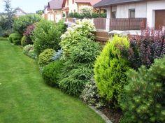 backyard designs – Gardening Ideas, Tips & Techniques Privacy Landscaping, Outdoor Landscaping, Front Yard Landscaping, Outdoor Gardens, Evergreen Garden, Patio Planters, Farmhouse Garden, Shade Garden, Garden Planning
