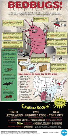 I got rid of bedbugs naturally without harmful chemicals in one day. I helped someone get rid of the Step Function, Rid Of Bed Bugs, Enzyme Cleaner, Flea Spray, Termite Control, Pest Control Services, Enjoy The Sunshine, Sleep Tight