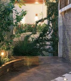 Projetos de iluminação realçam cores e texturas das plantas no seu jardim - Casa