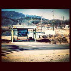 강원도 다녀오는 길, 아무도 없는 버스 정류장. 점점 요런 풍경이 좋아진다.