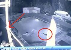VIDEO: Sale corriendo y deja a su novia en la Piscina con un Cocodrilo!