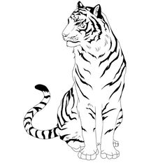 Coloring Pages Tiger new 50 (Animals > Tiger) - free printable . Tattoo Sketches, Tattoo Drawings, Art Sketches, Art Drawings, Tiger Drawing, Tiger Art, Pyrography, Big Cats, Animal Drawings